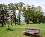 雲出川河川敷公園