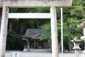 水屋神社(大楠)