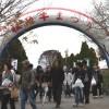 2017年11月26日(日)松阪牛まつり(第68回松阪肉共進会)