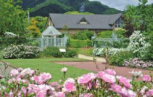 松阪農業公園貝爾農場