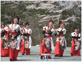 nameriko-sakura